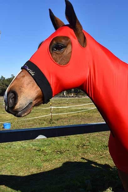 horse skinny hood red performa ride