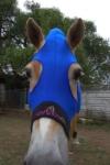 performa ride horse lycra hood2
