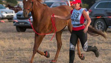 A debrief: American Endurance Ride Conference