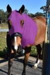 horse skinny hood purple performa ride