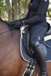 performa ride black flexion horse riding tights side2