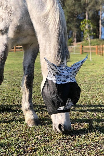 horse fly veil with ears nose front side performa ride