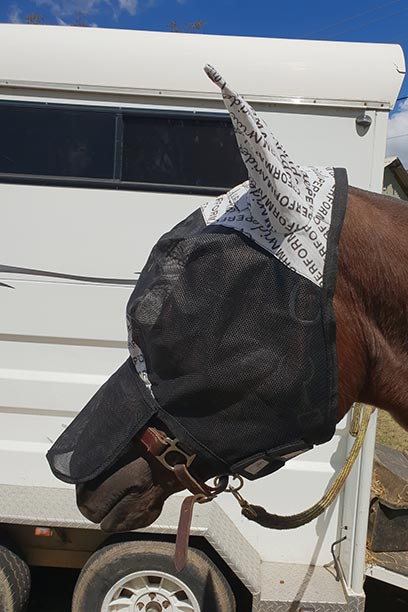 horse fly veil with ears nose left performa ride