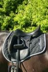 liquid glitter jump saddle pad silver left side close up performa ride