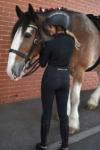equestrian long sleeve top slim fit black back wesley horse performa ride