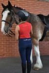 equestrian summer sleeveless top slim fit red back wesley horse performa ride