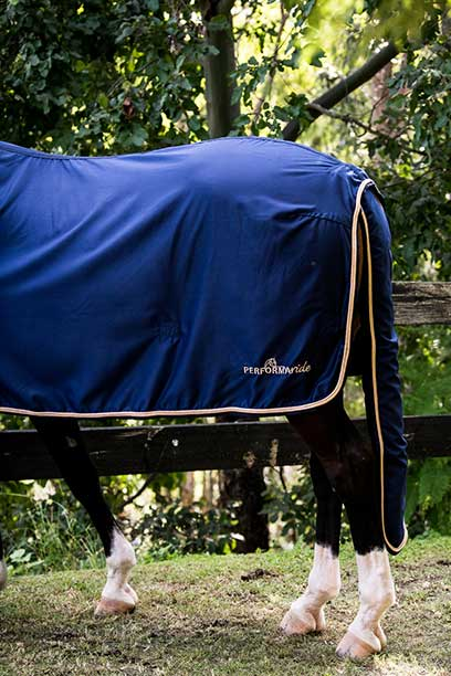 midnight rose luxe horse rug combo back tail bag performa ride