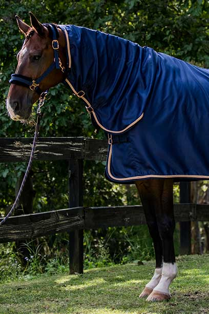 midnight rose luxe horse rug combo front left half performa ride
